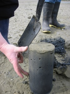 Trialling a community estuary monitoring kit. Waikouaiti, NZ.