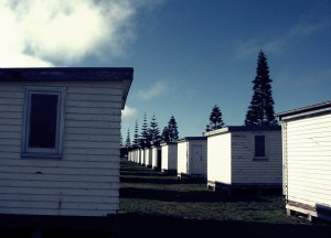 Huts, Bay of Plenty