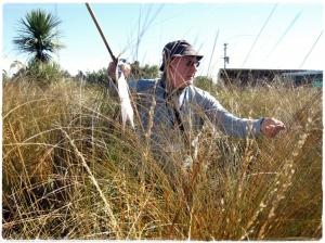Community wetland monitoring workshop: setting up a vegetation plot