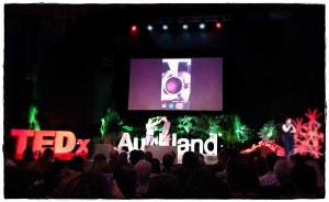 Live Demo at TEDxAKL2015: Looking into an eyeball