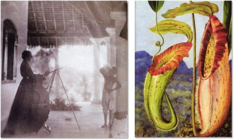 The marvelous Marianne North at work, painting her distinctive botanical illustrations in oil paint.
