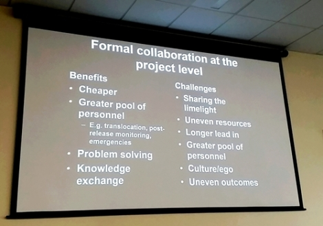 Collaboration at the project level