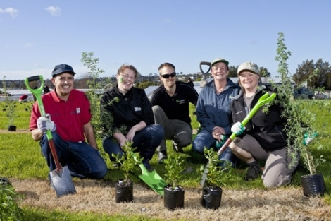 Planting Day_Auckland Design Manual Photo_Auckland Council