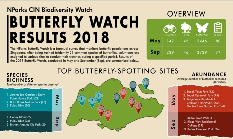 NParks Butterfly Survey